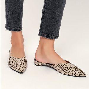 Alert Leopard Stella Suede Point Toe Mules